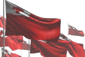 cute labor day flag 3d illustration. - many Tonga flags are wave isolated on white - picture with soft focus