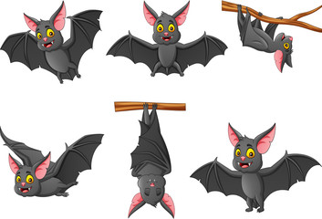 Set of cartoon bat with different expressions. vector illustration