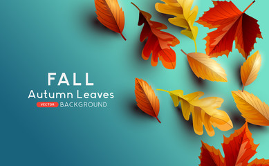 Red and golden coloured Autumn leaves on a blue background. Vector illustration. Wall mural
