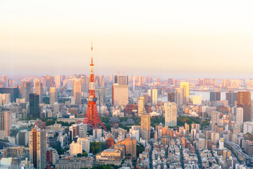 Aluminium Prints Asian Famous Place The most beautiful Viewpoint Tokyo tower in tokyo city ,japan.