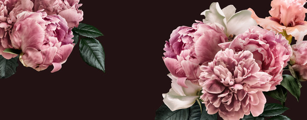 Floral banner, flower cover or header with vintage bouquets. Pink peonies, white roses isolated on black background.