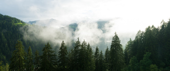 sun shining through fog and clouds after rain in a forest and mountain landscape
