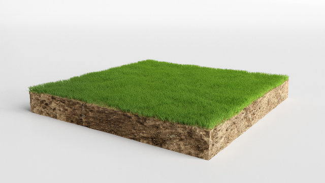3D cubical grass land with soil geology cross section, 3D Illustration ground ecology isolated on white