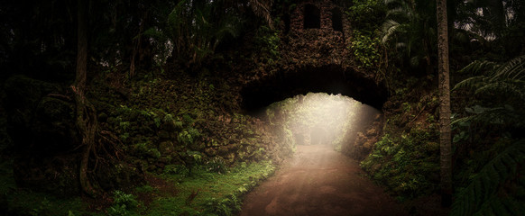 Fotorollo Eisenbahnschienen Alte steinernde Brücke im Dschungel