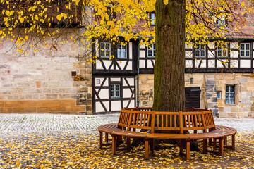 Wall Mural - Alte Hofhaltung, Baum mit Rundbank, Historisches Bamberg -  Deutschland
