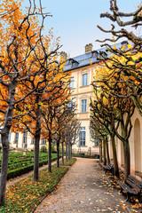 Fototapete - Baumallee im Rosengarten mit Neuer Residenz in Bamberg