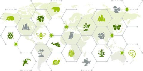 Obraz international wildlife / biodiversity icon concept – endangered animals icons with world map, vector illustration - fototapety do salonu