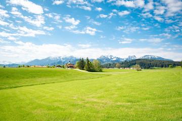 Grüne Bergwiesen im Allgäu im Frühjahr