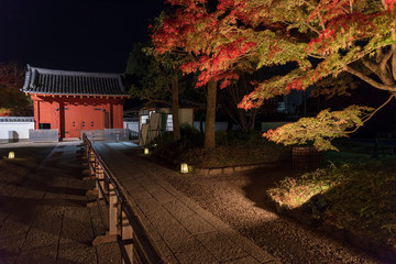 Fototapete - Entrance of traditional Japanese house in autumn season at night