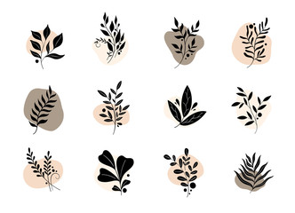 Nature set branch leaves logo. Icon collection isolated in white background.