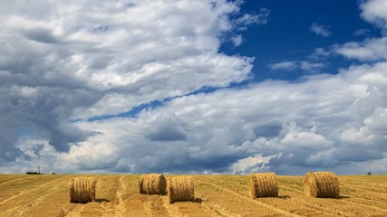 Fototapete - Yellow haystacks, field wheat, blue sky with clouds. Beautiful dynamic landscape on Sunny day. Beauty nature, agriculture and seasonal harvest time. Scenic agricultural land, 4K Timelapse