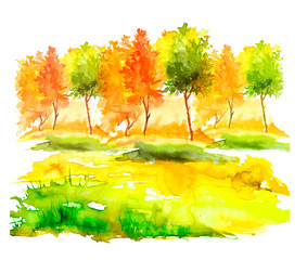 Foto auf Acrylglas Gelb Watercolor autumn trees of yellow, red, orange color. Autumn forest,hill, blue sky. Watercolor art background.Beautiful splash of paint. Abstract creative background.
