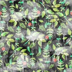 Watercolor seamless pattern from plants, flowers, leaves, grasses, branches. Berry raspberries. Picture parsley, celery, mint, dill, spice. Vintage, fashionable drawing, hand-drawn graphics.