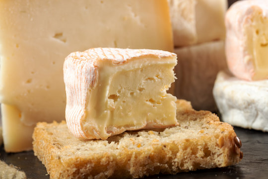 French Saint Albray cheese and slice of french bread
