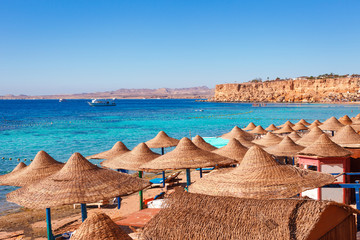 Sunny resort beach with palm tree at the coast of Red Sea in Sharm el Sheikh, Sinai, Egypt, Asia in summer hot. Сoral reef and crystal clear water. Famous tourist destination diving and snorkeling