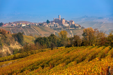 Autumnal vineyards in Northern Italy.