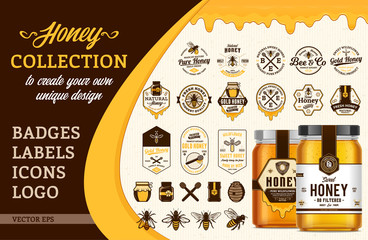 Vector honey collection