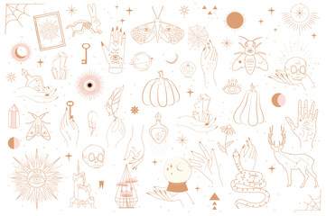 Collection of Mystical and Mysterious objects, Skulls, Animals, Space objects, magic ball, Crystals, human hands. Minimalistic objects made in the style of one line. Editable vector illustration. Wall mural
