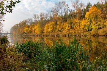 Fototapeta Wędkarstwo jesienią kanał żerański
