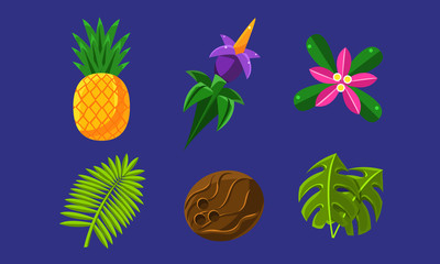 Collection of Glossy Tropical Fruits, Flowers and Palm Leaves, Exotic Plants Vector Illustration