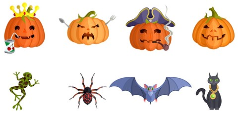 Halloween spider cat and evil pumpkins scary
