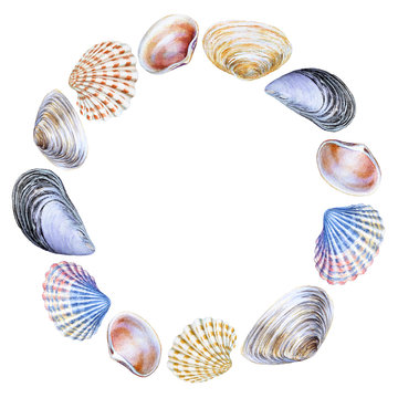 Watercolor round frame with sea shells with copy space
