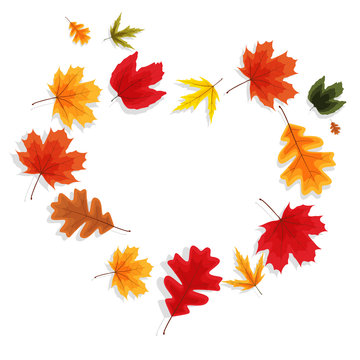 Autumn Natural Leaves Background. Vector Illustration