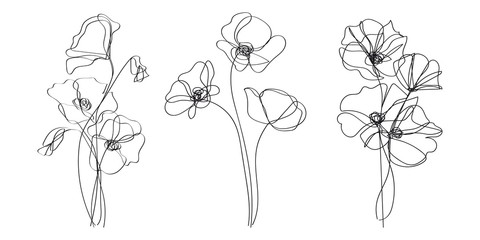 Continuous Line Drawing Set Of Plants Black and White Sketch of Poppy Flowers Isolated on White Background.  Poppies Flowers One Line Illustration. Vector EPS 10.