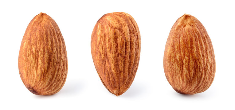 Almond isolated. Almonds on white background. Almond set. Full depth of field..