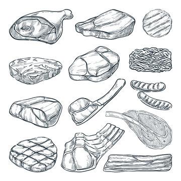 Meat collection, sketch vector illustration. Hand drawn food design elements. Beef steak, ham, pork fillet, lamb