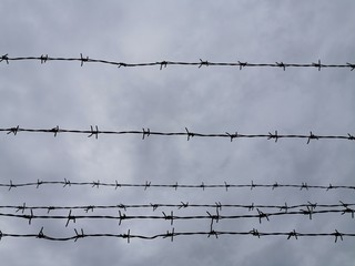Barbed wire against the sky Close-up photo