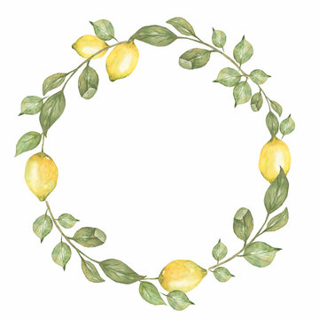 Hand drawn round wreath of watercolor lemon. Watercolor illustration wreath of lemon and leaves. Can be used as a greeting card for background, birthday, mother's day,etc..