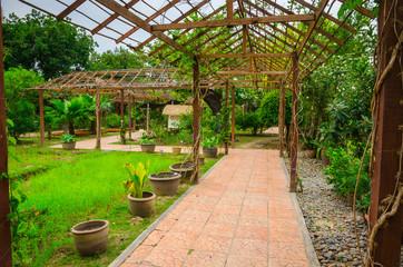 Beautiful  spice garden in Pattaya Thailand