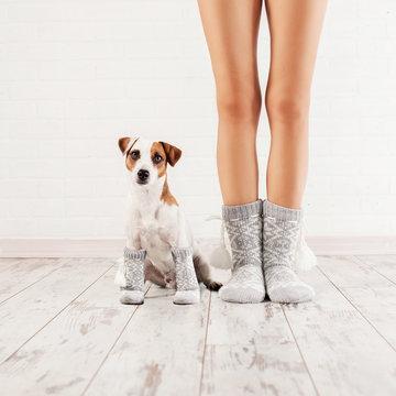 Female and dog in socks