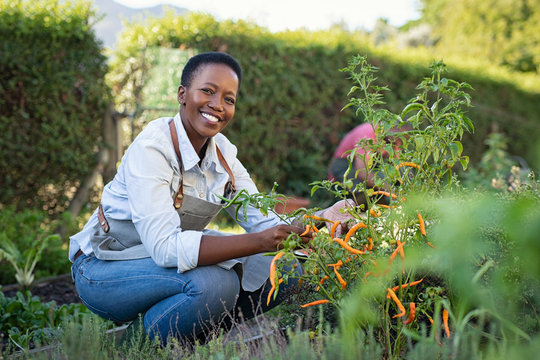 Satisfied woman working at vegetable garden