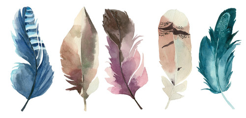 Set of watercolor feathers