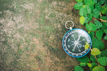 Travel background, compass on ground with leaf in nature with sunlight. Success concept.