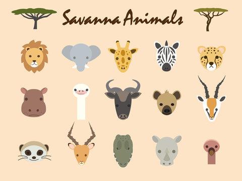 サヴァンナの動物1