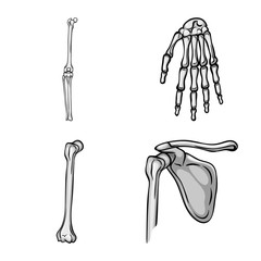 Vector illustration of biology and medical sign. Set of biology and skeleton stock vector illustration.