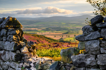 Wall Murals Pale violet Ros Castle view looking west through Dry Stone Wall, also known as Ros Hill, due to an ancient prehistoric Hillfort on its summit, located near Chillingham in Northumberland and has great views