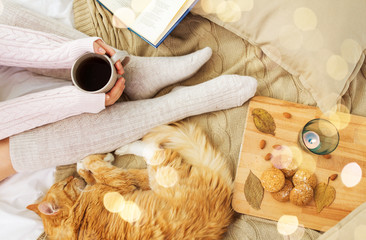 Fototapete - pets, hygge and people concept - woman with coffee, book, cookies and red tabby cat sleeping on blanket at home in autumn