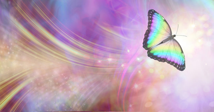 Transformation and spiritual release concept - vibrant butterfly against a white energy formation flowing outwards, sparkles and colours moving in all directions with copy space