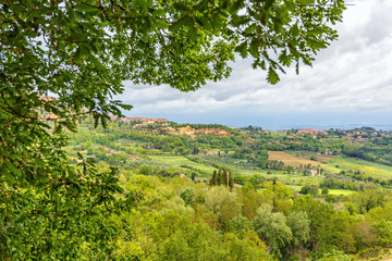View of a rural Italian landscape with a tree branch