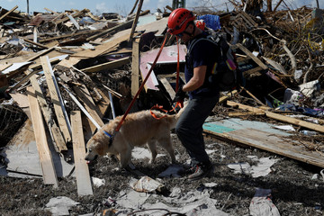 A member of the Canadian Burnaby Firefighters Search & Rescue Task Force and a dog search for the dead in the destroyed the Mudd neighbourhood after Hurricane Dorian hit the Abaco Islands in Marsh Harbour