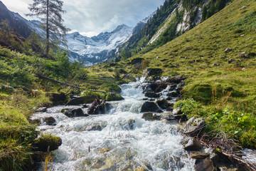Fototapete - Wildbach in den Alpen mit Gletscher im Hintergrund