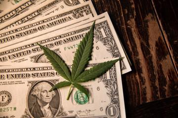 Money Marijuana Dollar bill and Medical Marijauna on Table