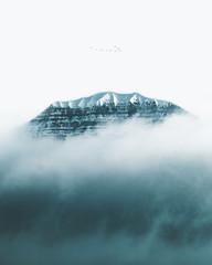 fog mountain birds