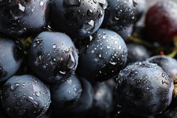 Fresh ripe juicy black grapes as background, closeup view Fototapete