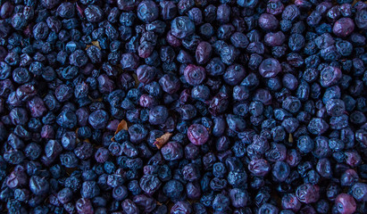 Dried Blueberries Images, Stock Photos