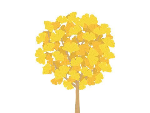 銀杏の木のイラスト
